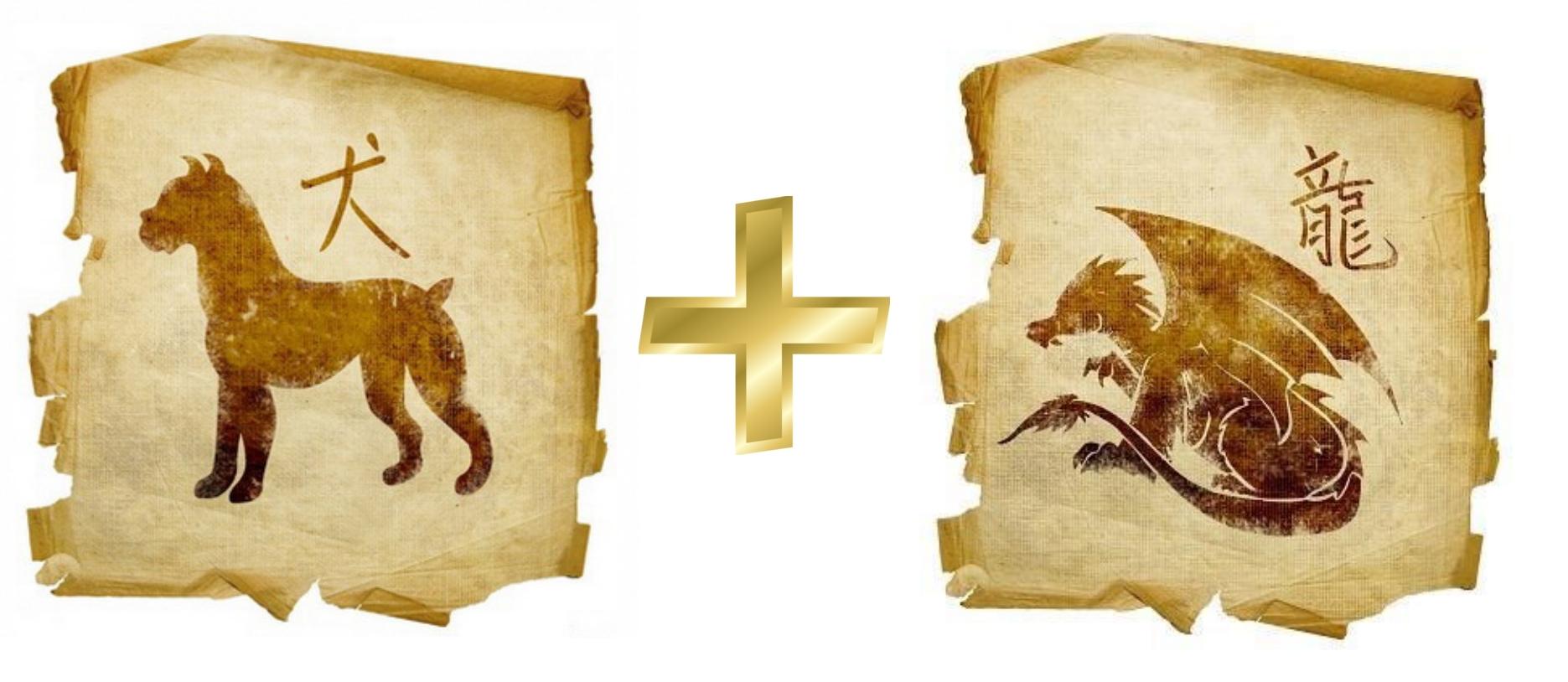 Собака и Дракон - гороскоп совместимости в любви