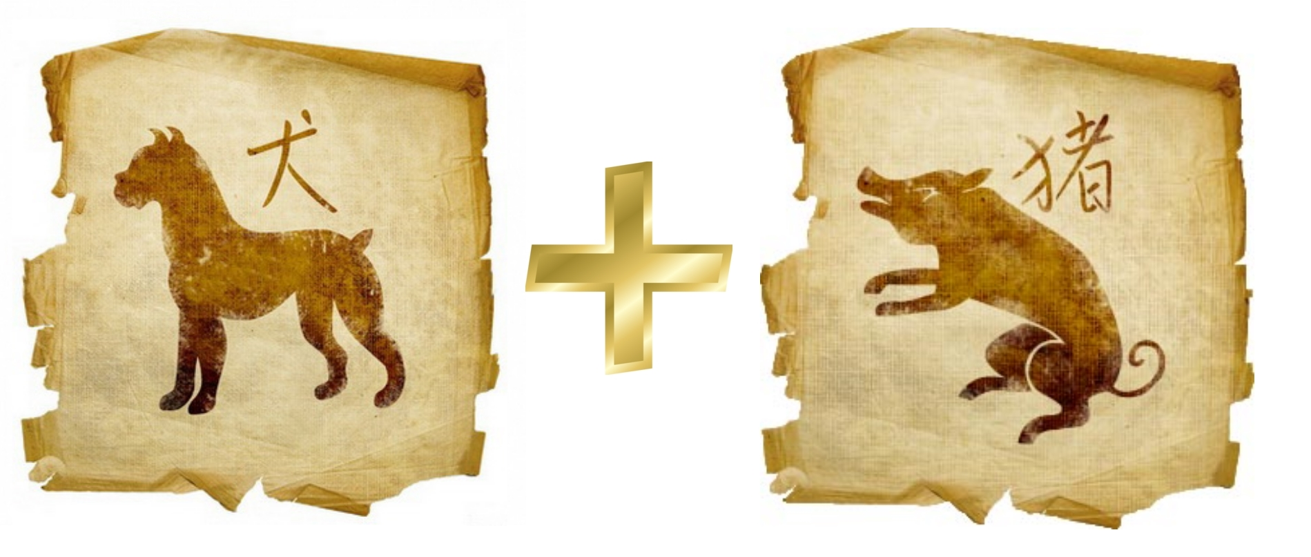 Собака и Свинья (Кабан) - гороскоп совместимости в любви