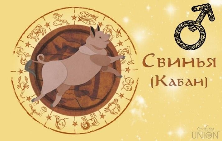 Мужчина Свинья (Кабан) в любви. Характеристика и гороскоп рожденных в этот год