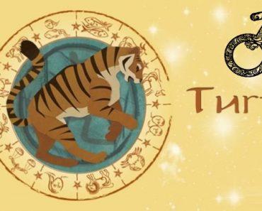 Мужчина Тигр в любви. Характеристика и гороскоп рожденных в этот год