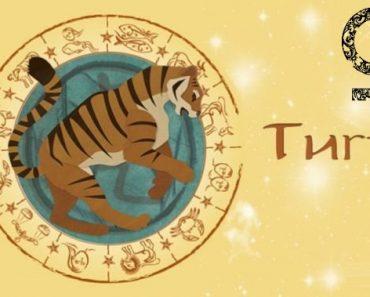 Женщина Тигр в любви. Характеристика и гороскоп рожденных в этот год