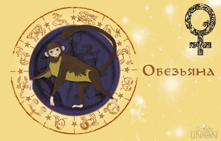 Женщина Обезьяна в любви. Характеристика и гороскоп рожденных в этот год