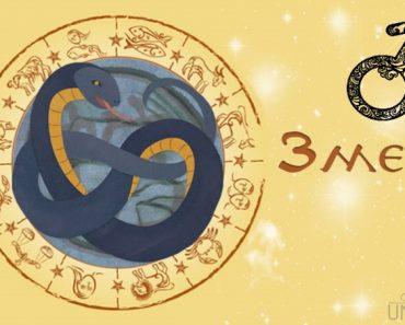 Мужчина Змея в любви. Характеристика и гороскоп рожденных в этот год