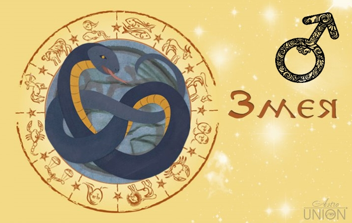 Летом змея огненная отправиться путешествовать, а также приобретет себе новый, как у богатого друга-олигарха, автомобиль.