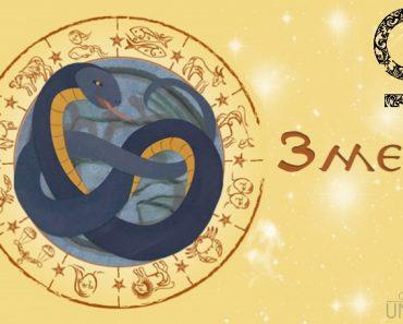 Женщина Змея в любви. Характеристика и гороскоп рожденных в этот год
