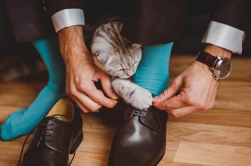 Шнуровка обуви. Кроссовок, ботинок, женских и мужских туфель