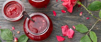 Рецепт варенья из лепесков розы в домашних условиях пошагово
